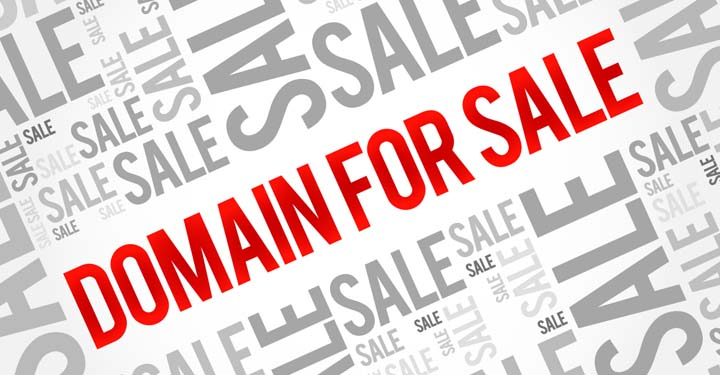 """""""Domain Buying & Selling"""" Business"""